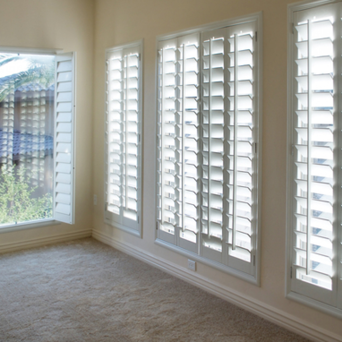 Choose from a wide range of window treatments